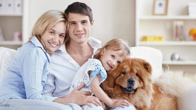 Wills & Trusts dog-young-family Direct Wills London